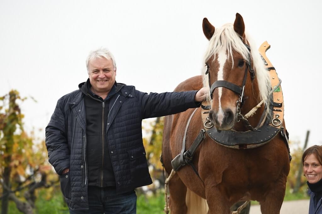 Joachim und Pferd Willi