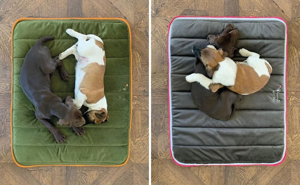 """Hundepad """"Greta"""" in Khaki und Anthrazit"""
