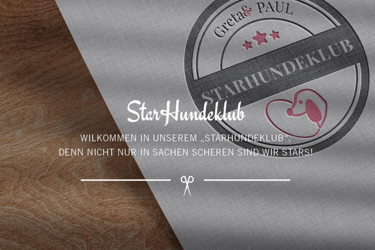 Blog_StarHundeklub_Vorschau-Header