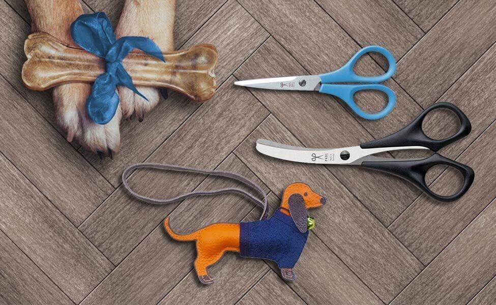 Hundeset mit Dackelanhänger in Blau
